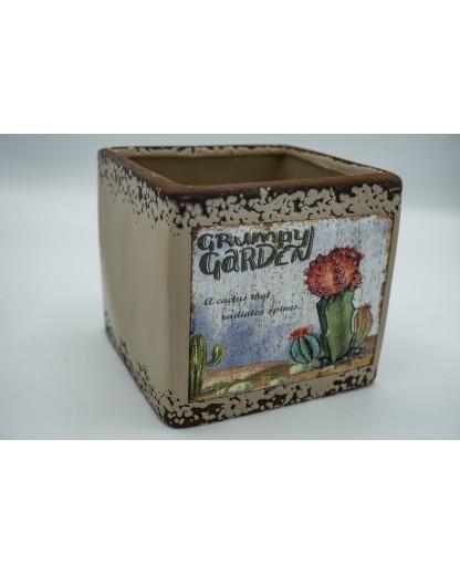 Cactus Cube 12cm