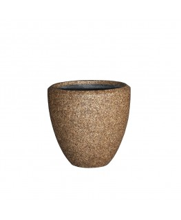 Gabon Cone