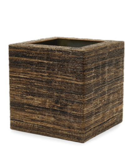 Etosha Cube